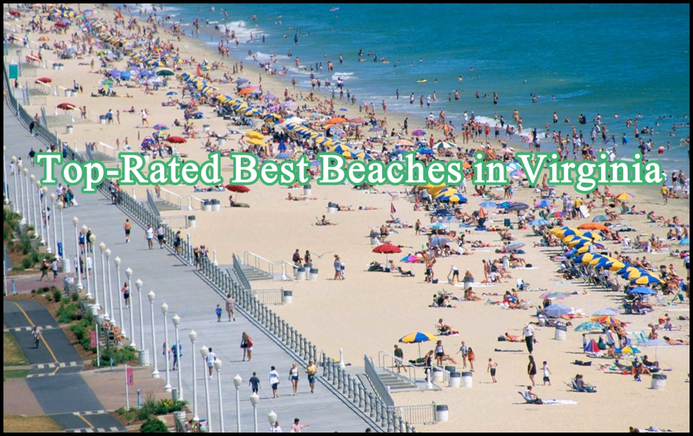 Top-Rated Best Beaches in Virginia