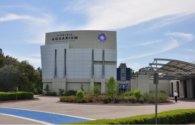 Virginia Aquarium & Marine Science Center: Places to visit in Virginia